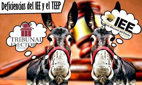 Sentencias del TEPJF ponen al descubierto las deficiencias del IEE y el TEEP